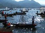 洱海捕鱼能手