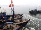 百万船主的捕鱼生活